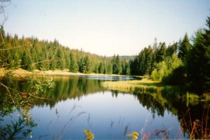 Šumava jezero